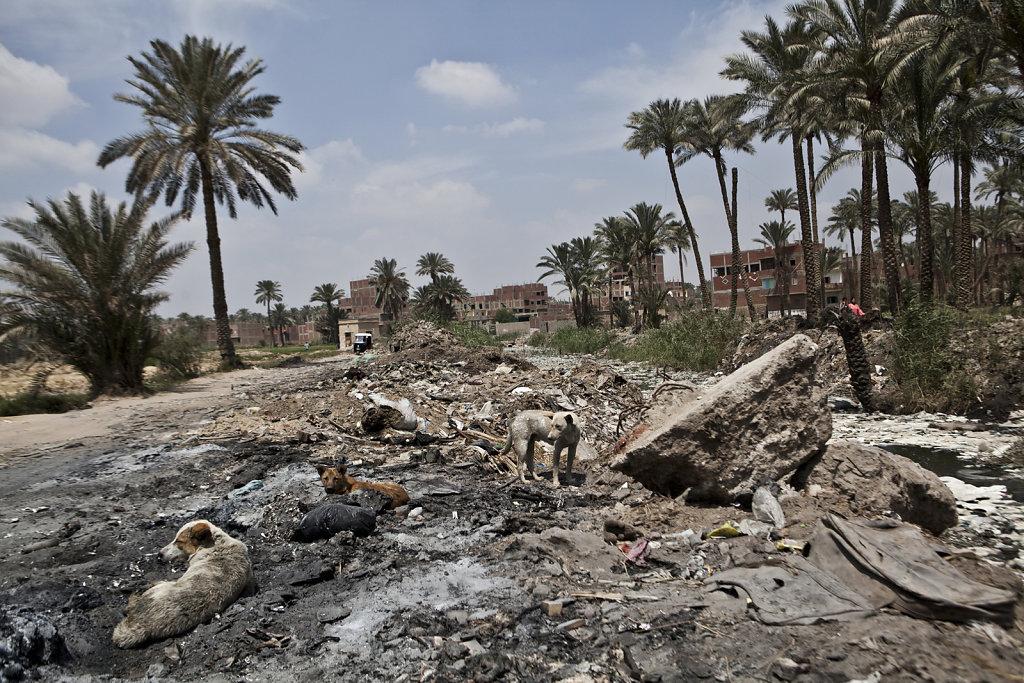 201304-Cairo-Egypt-001.jpg