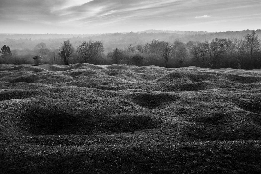 Verdun: sous la forêt, les cicatrices.