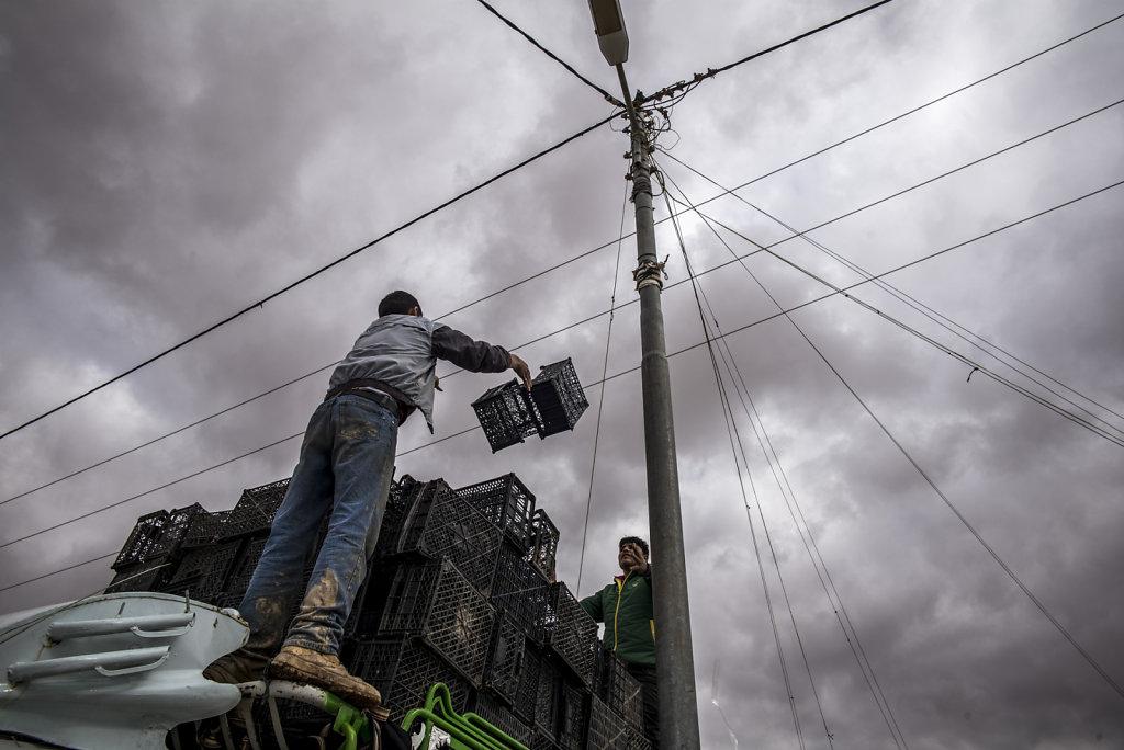 JORDANIE AL ZA'ATARI CAMP DE REFUGIES SYRIENS