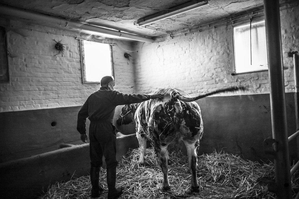 BELGIQUE ENGHIEN AGRICULTEUR FRANZ CHEVALIER